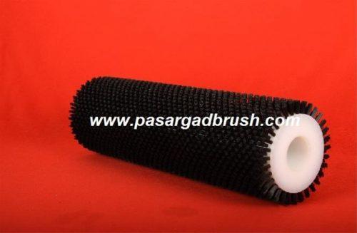 Brush Carrot Wash1