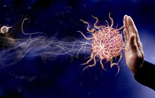 immune-system-fight-covid19