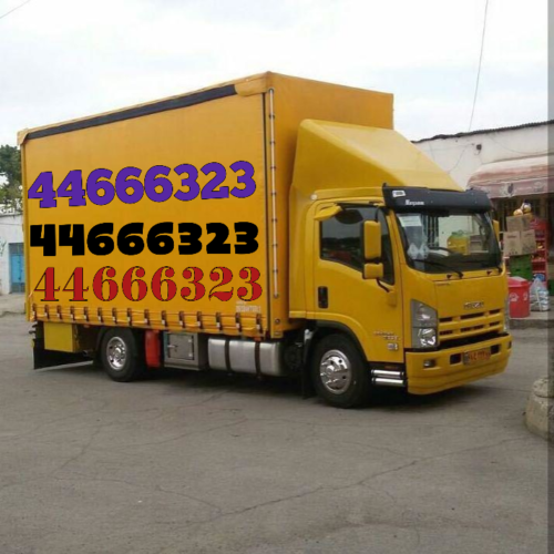 img1591026845405 (1)